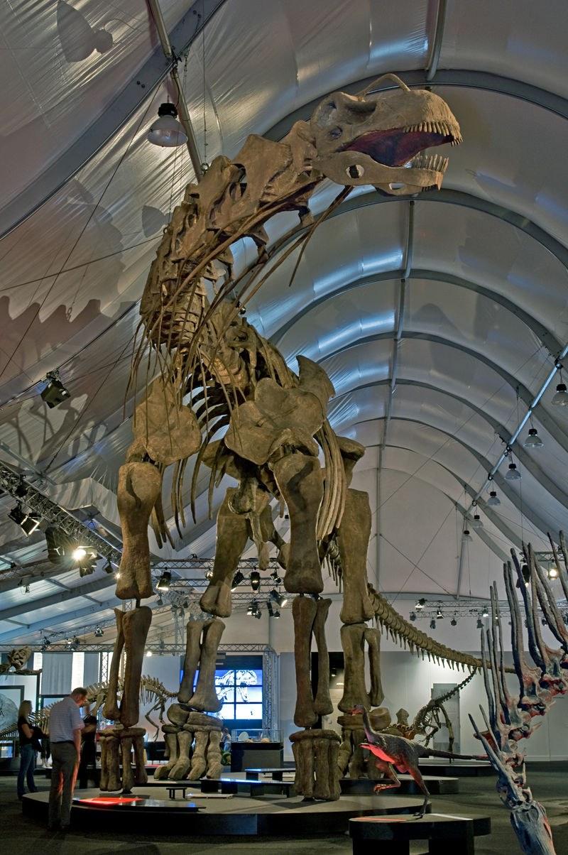 Argentinosaurus2