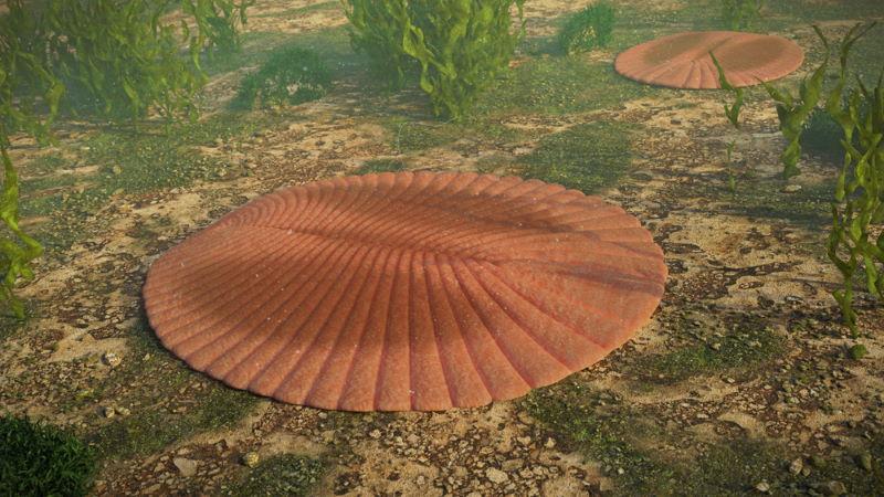 dickinsonsia eerste leven op aarde