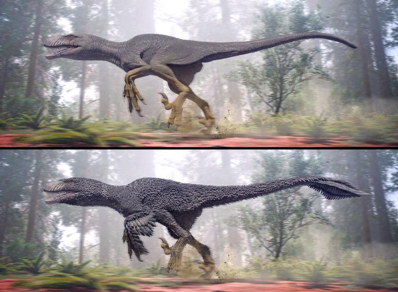dinosaurus met veren
