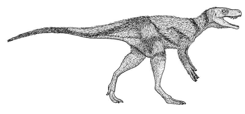 Chindesaurus 1