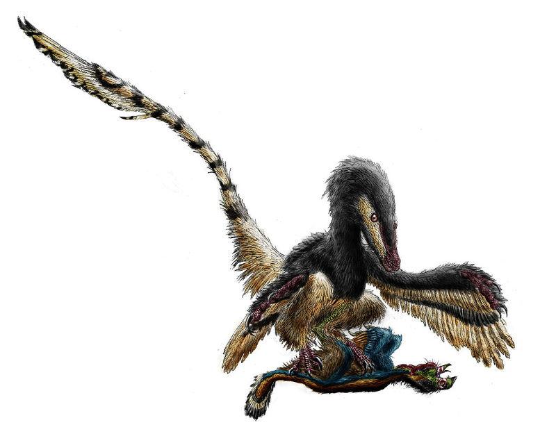 jagende velociraptor