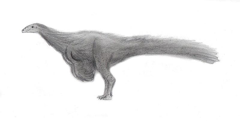 Nqwebasaurus thwazi